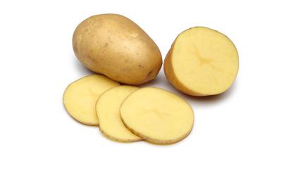 Kartoffel Fördergut Lebensmittelindustrie